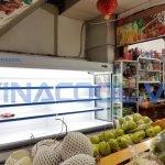 Tủ bảo quản hoa quả tươi Vinacool SLG-1500F