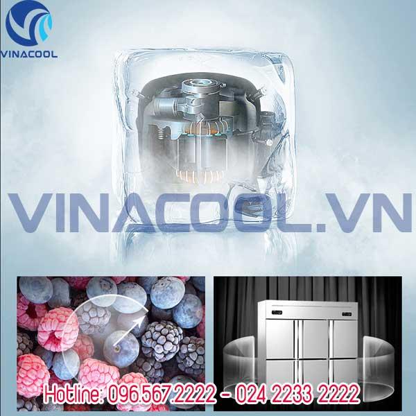 tu-bao-on-6-canh-vinacool-4