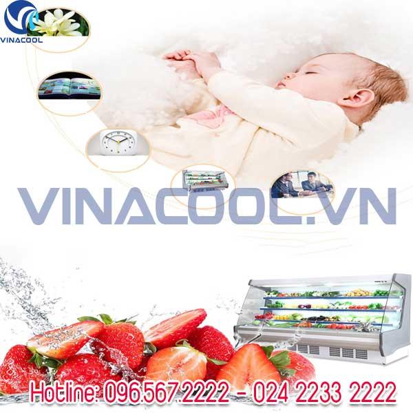 tủ trưng bày rau củ tươi Vinacool
