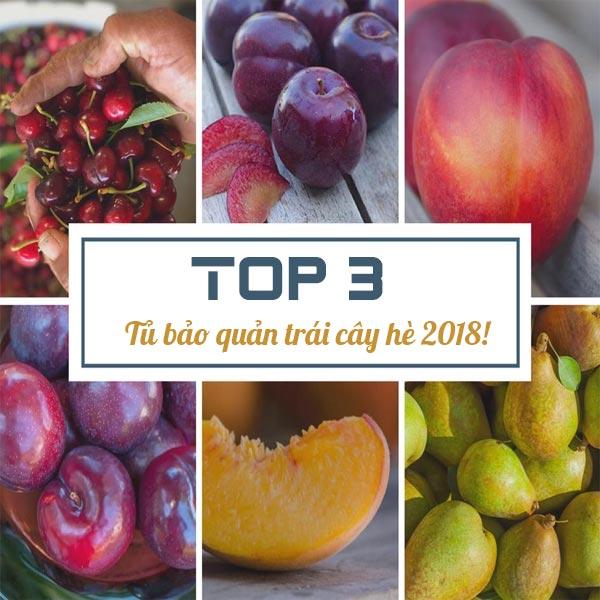 top 3 tủ mát bảo quản trái cây hè 2018