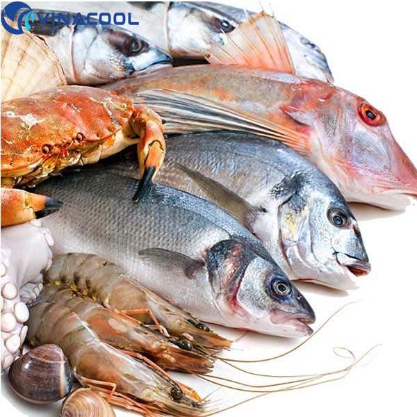 thịt cá tươi sống Vinacool