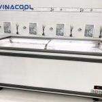 tủ đông trưng bày thực phẩm Vinacool