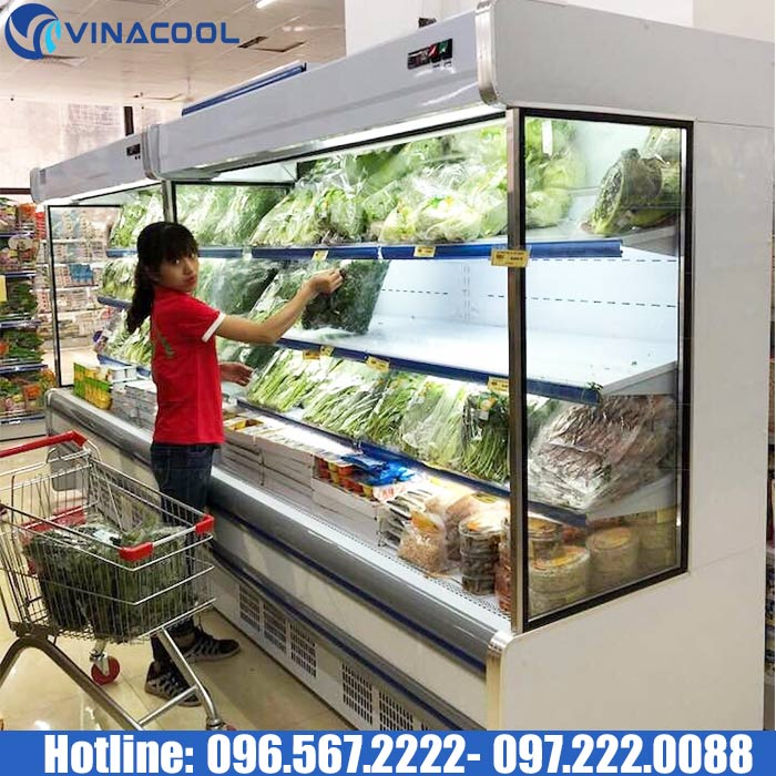 tủ bảo quản rau nhập khẩu Vinacool