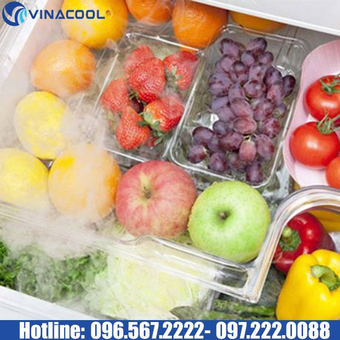 bảo quản rau quả tươi bằng phương pháp lạnh