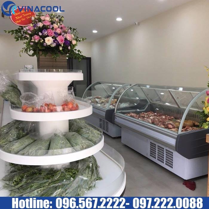 tủ bảo quản thịt tươi sống Vinacool