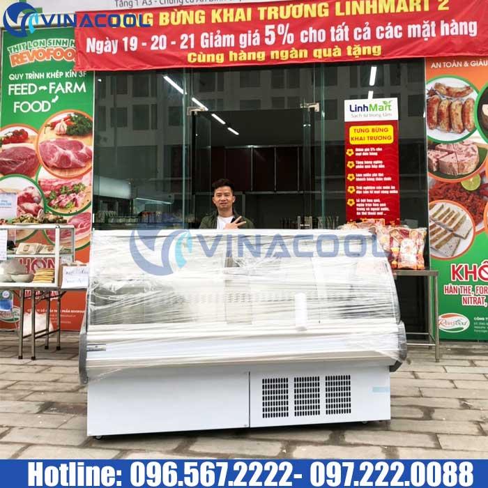 tủ thịt mở cửa trước Vinacool
