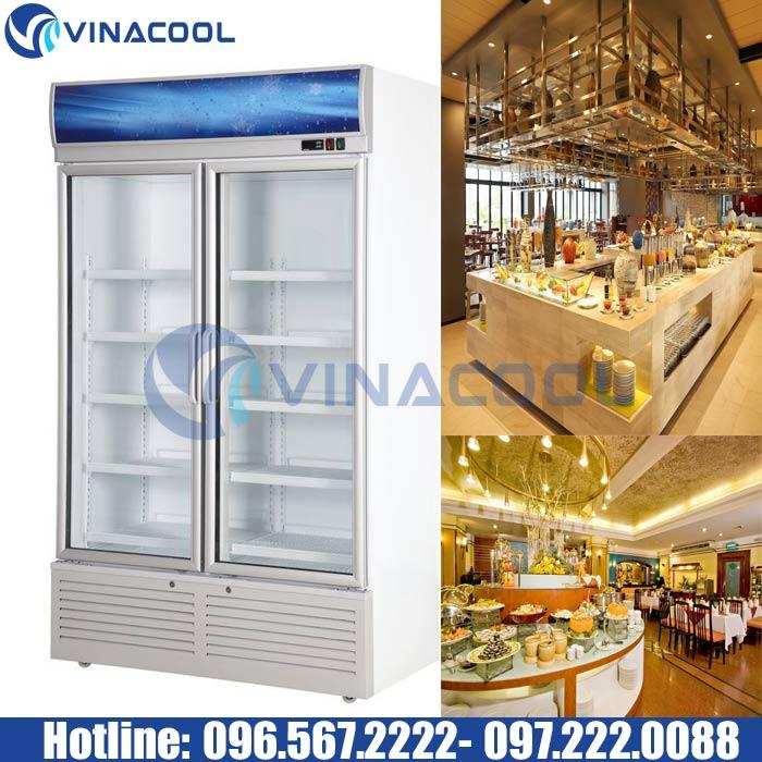 tủ mát 2 cánh kính bảo quản thực phẩm Vinacool