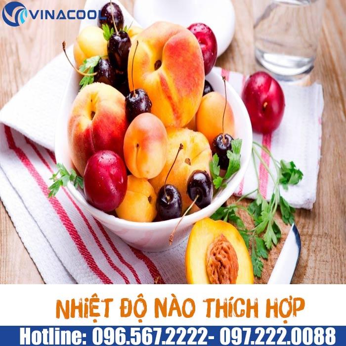 bảo quản trái cây