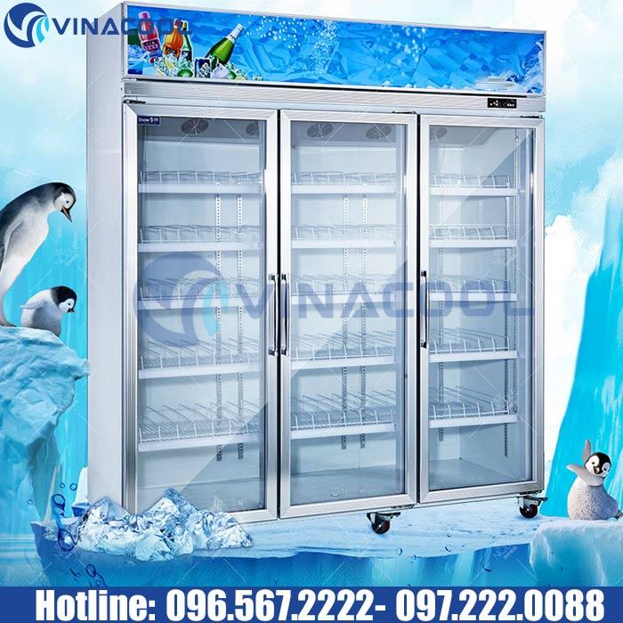 tủ lạnh trưng bày tphcm