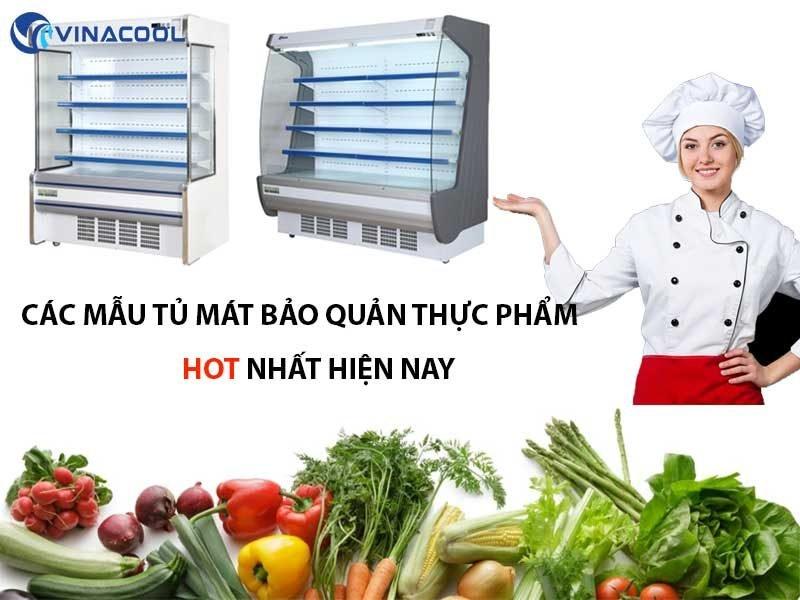 mẫu tủ mát bảo quản thực phẩm hot nhất