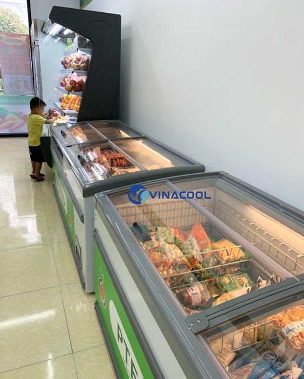 tủ đông lạnh nằm 2m1 vinacool