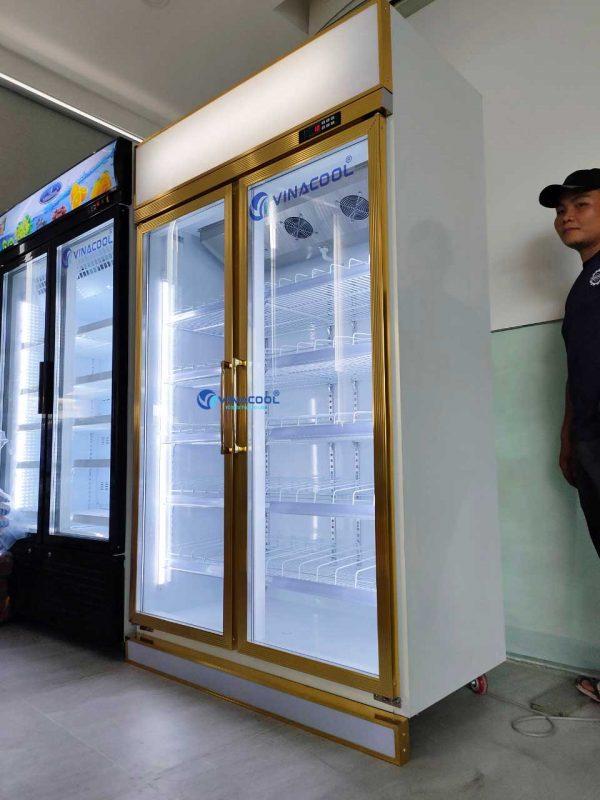 tủ mát 2 cánh kính giá rẻ Vinacool