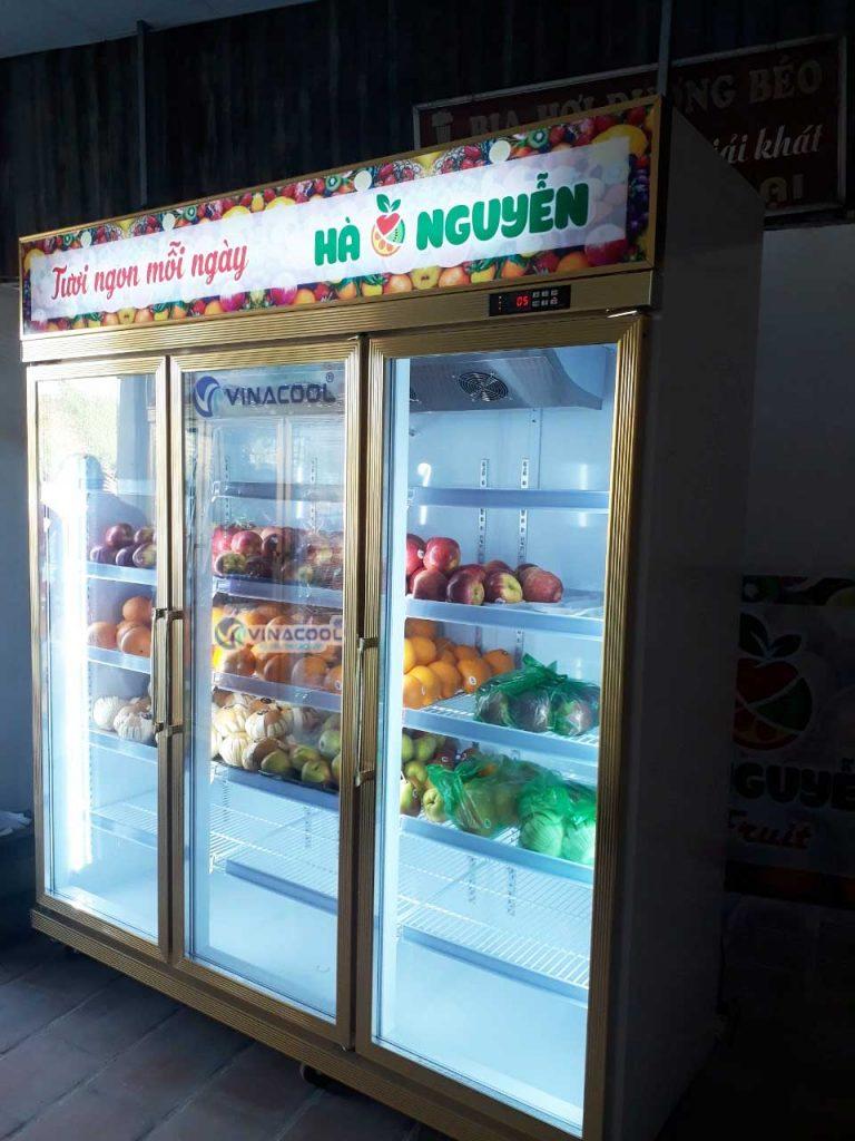 tủ trưng bày rau củ quả
