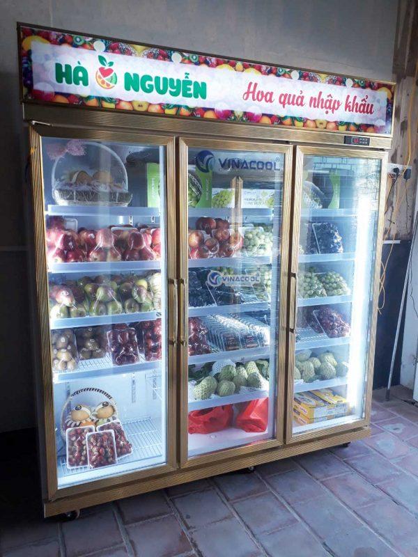 tủ bảo quản trái cây nhập khẩu
