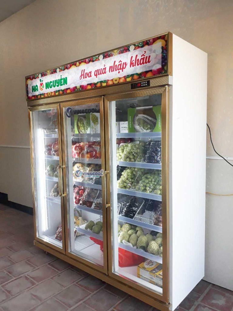 tủ mát 3 cánh trưng bày trái cây Vinacool