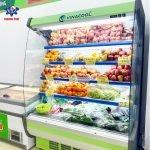 tủ siêu thị vòm cong Vinacool 1m5