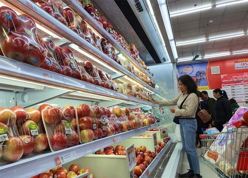 tủ siêu thị trưng bày trái cây vinacool